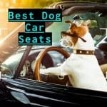 best-dog-car-seats-for-jack-russell-terriers